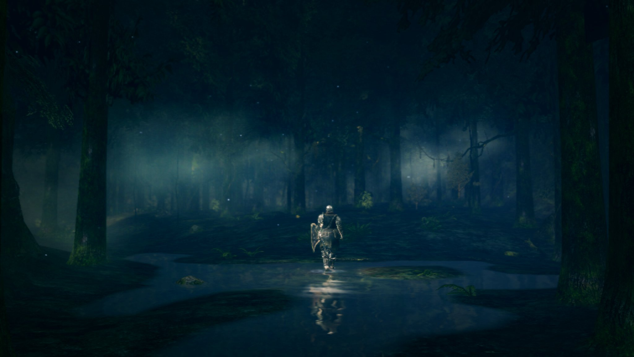 A picture that, for me, encapsulates the lonely awe of Dark Souls.